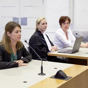 Professionele ontmoeting Getuigenverhoor ter zitting